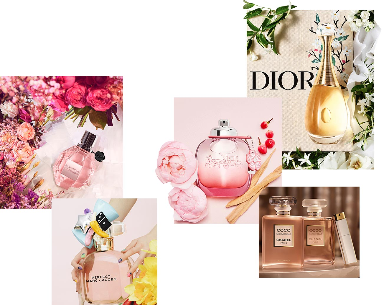Shop Favorite Fragrances